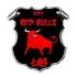 Red Bulls Łąg