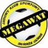 Megawat Świerże Górne
