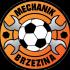 Mechanik II Brzezina