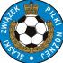 II Liga Wojewódzka Juniorów Młodszych gr. południowa (śląskie)