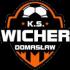 Wicher Domasław