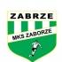 MKS Zaborze Zabrze 2009