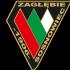 Zagłębie Sosnowiec 2004